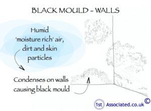 Black mould wall